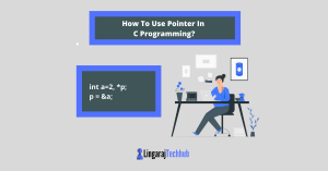 How To Use Pointer In C Programming_