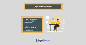 python comment
